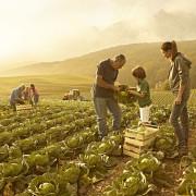 Agroalimentare di qualità